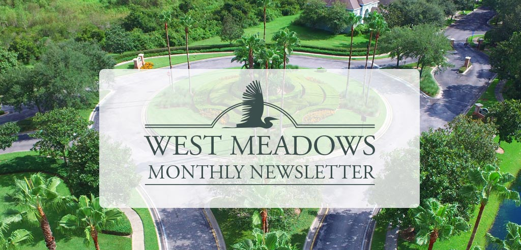 west-meadows-newsletter