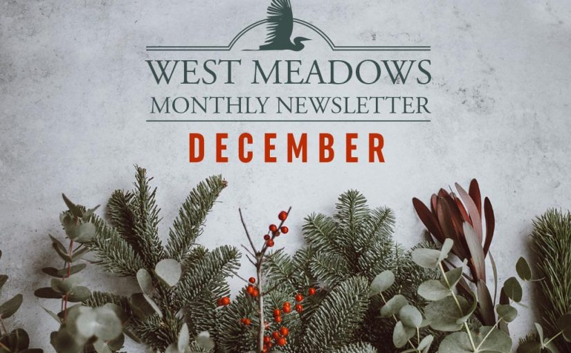 west-meadows-december