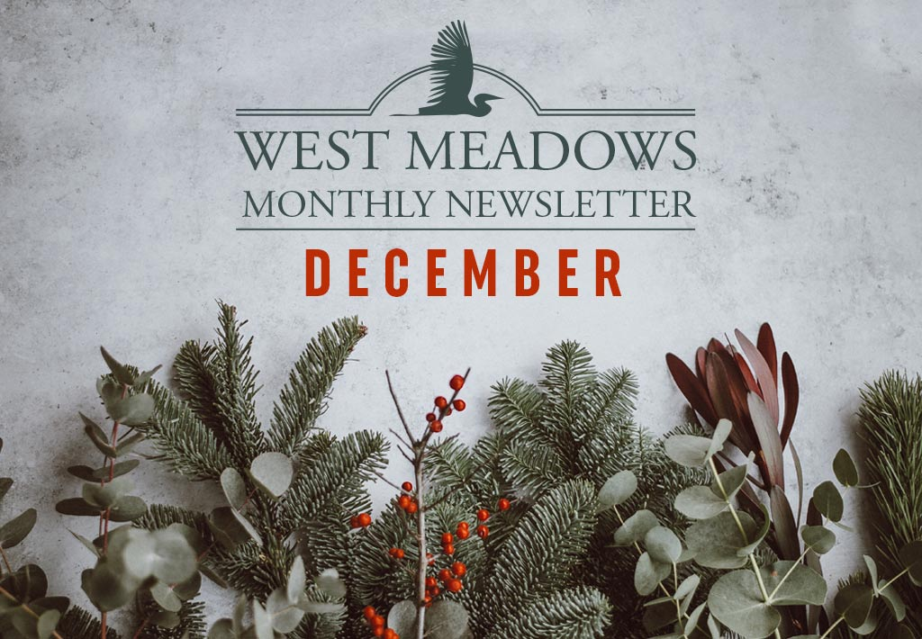 west-meadows-december