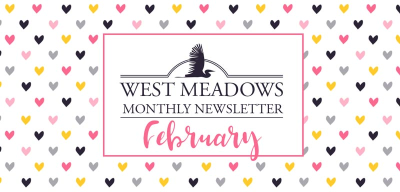 february-west-meadows